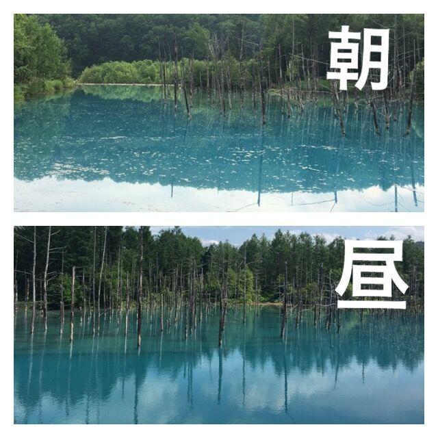 青い池朝と昼